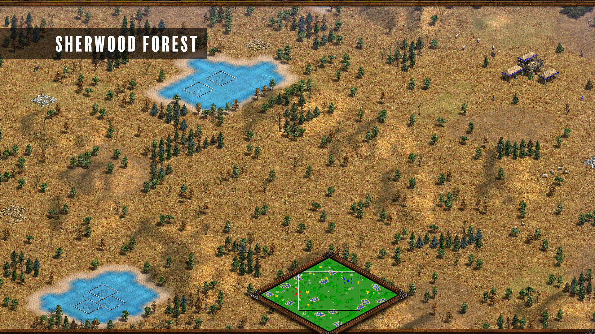 Sherwood Forest.png