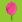 :flower1:
