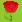 :flower3:
